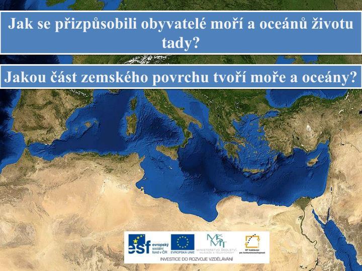Jak se přizpůsobili obyvatelé moří a oceánů životu tady?