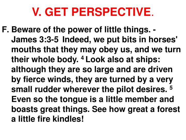 V. GET PERSPECTIVE