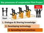 key processes of cooperative pilot project