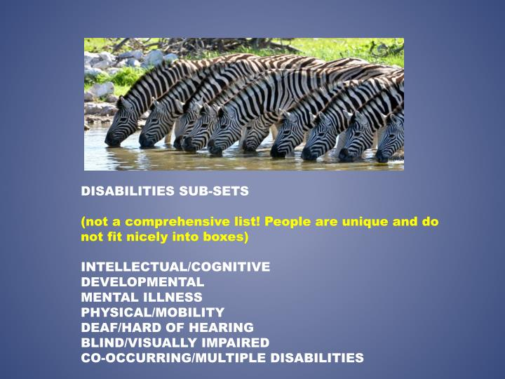 DISABILITIES SUB-SETS