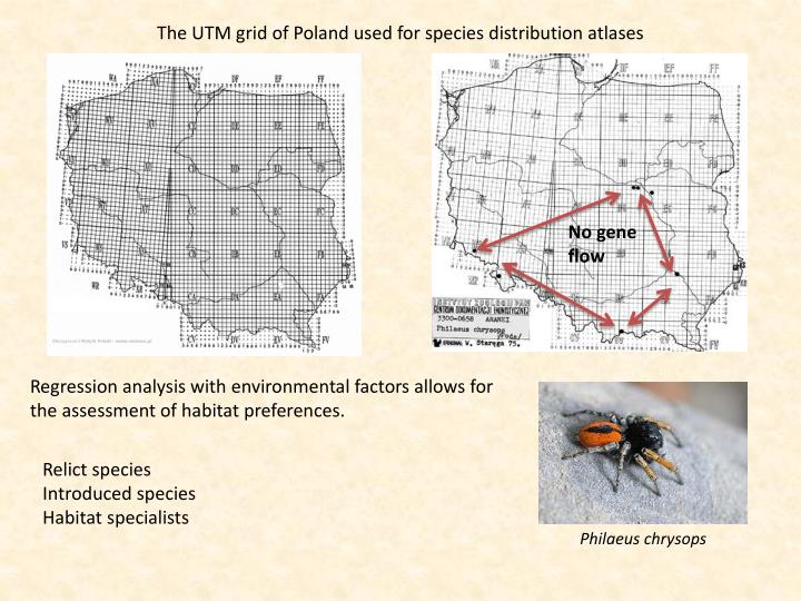 The UTM grid of Poland used for species distribution atlases