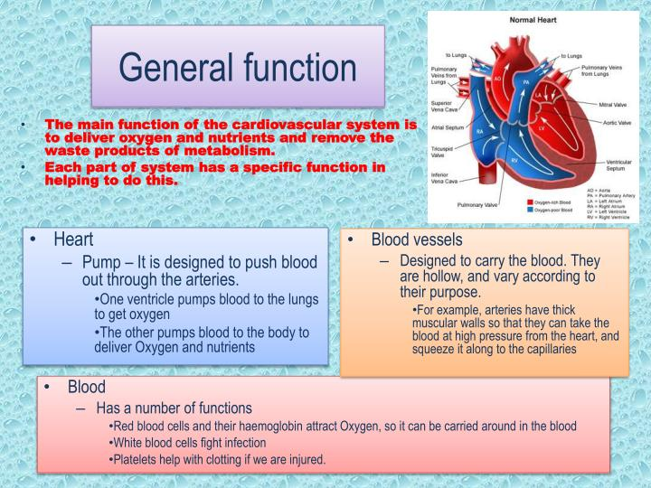 General function