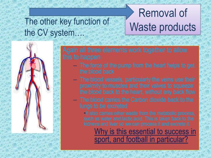 Removal of Waste products
