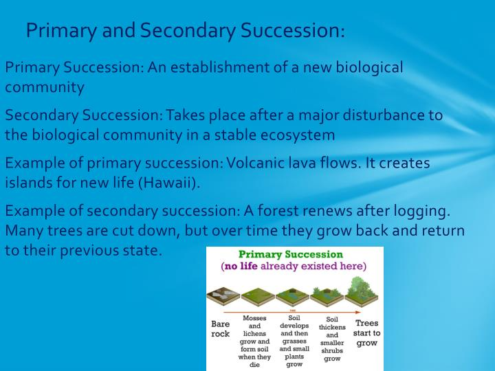 Primary and Secondary Succession:
