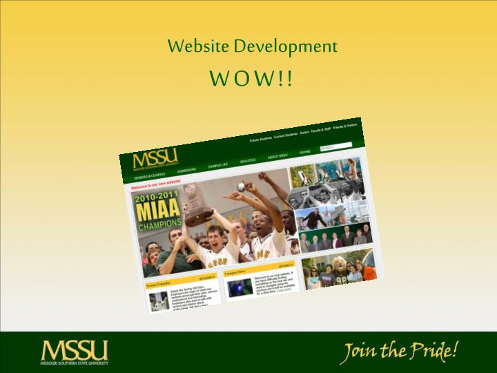 Website development wow