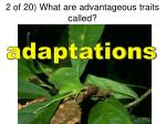 2 of 20 what are advantageous traits called1