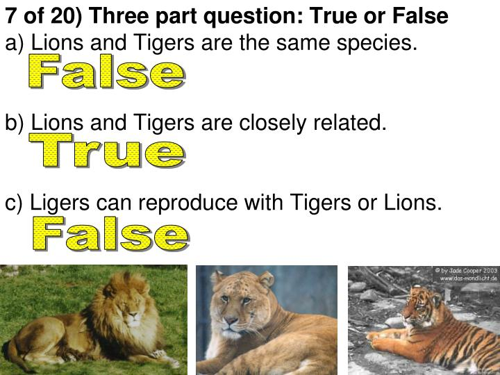 7 of 20) Three part question: True or False