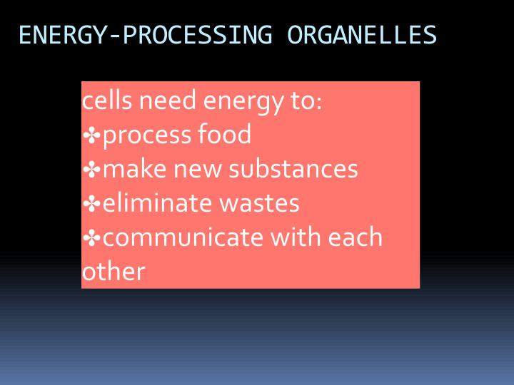 ENERGY-PROCESSING ORGANELLES