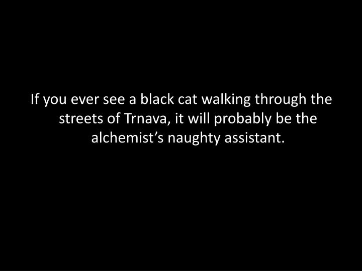 If you ever see a black cat walking through the streets of Trnava, it will probably be the alchemist's naughty assistant.