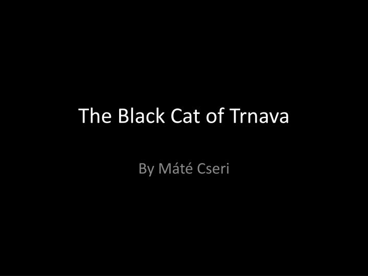 The Black Cat of Trnava