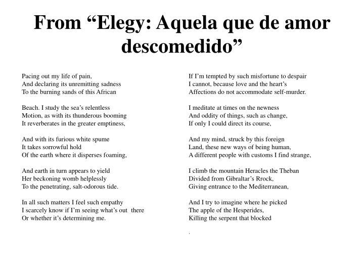 """From """"Elegy: Aquela que de amor descomedido"""""""