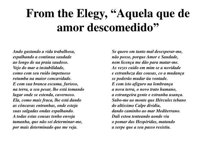 """From the Elegy, """"Aquela que de amor descomedido"""""""