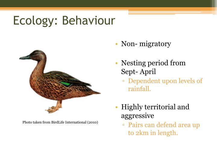 Ecology: Behaviour