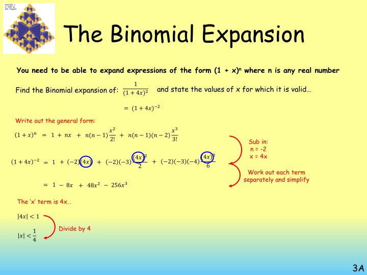 The Binomial Expansion