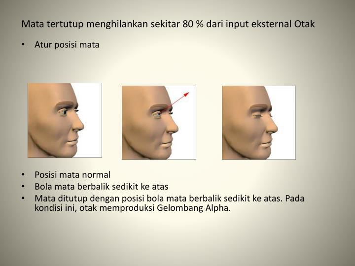 Mata tertutup menghilankan sekitar 80 % dari input eksternal Otak