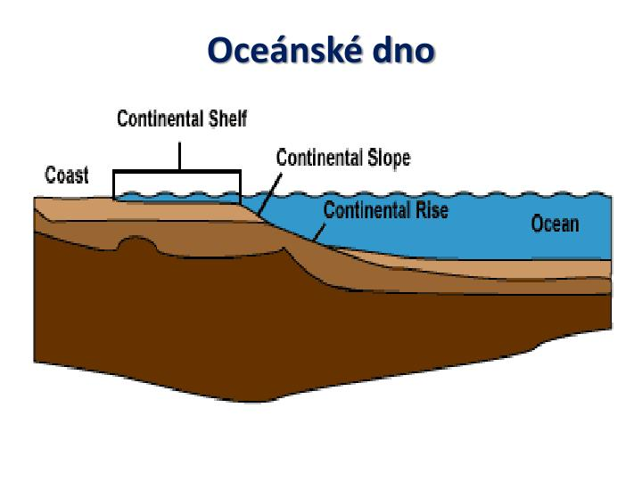 Oceánské dno