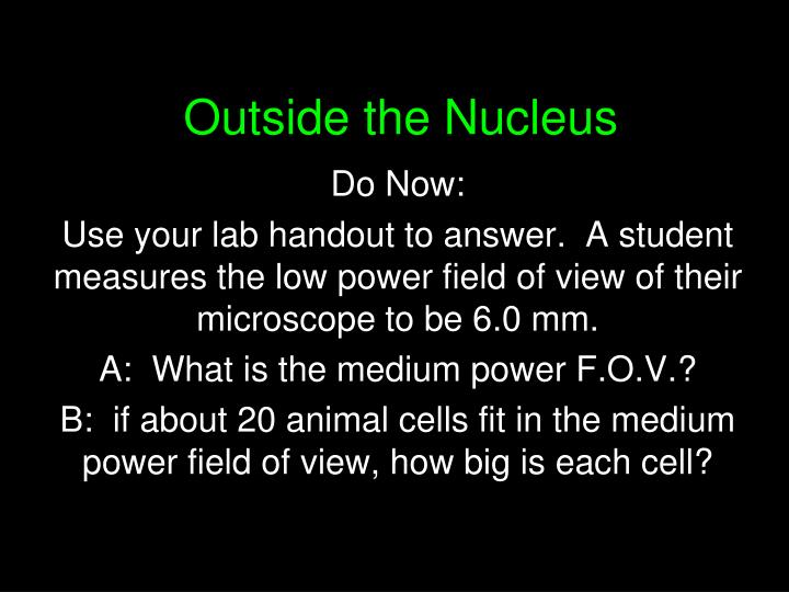 Outside the nucleus