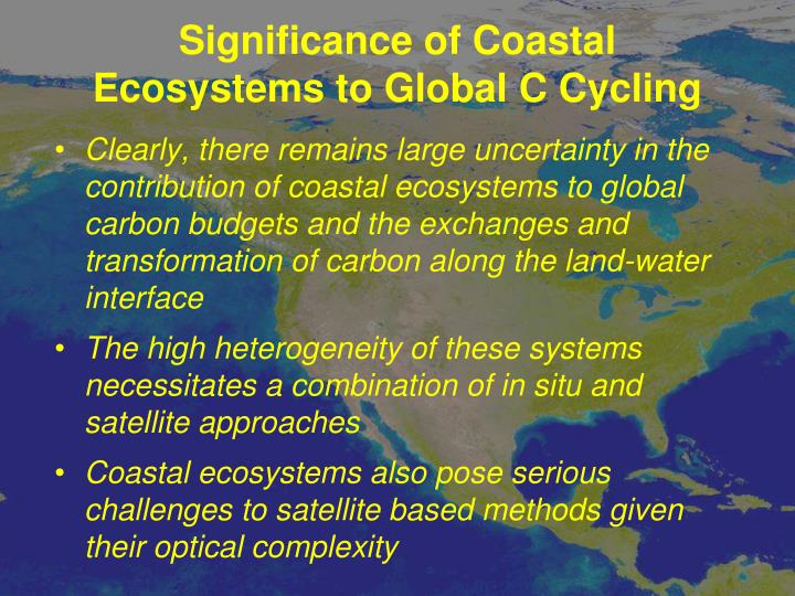 Significance of Coastal Ecosystems to Global C Cycling