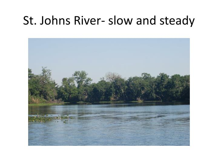 St. Johns River- slow and steady
