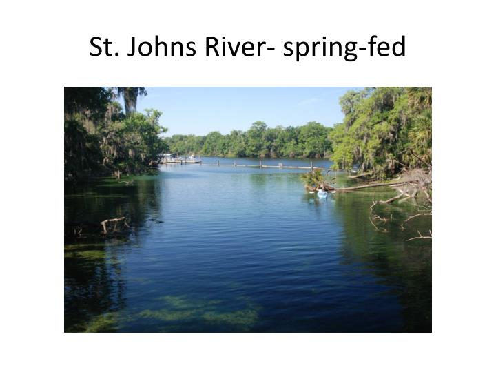 St. Johns River- spring-fed