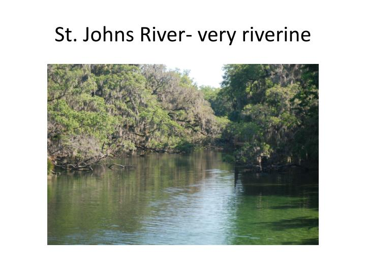 St. Johns River- very