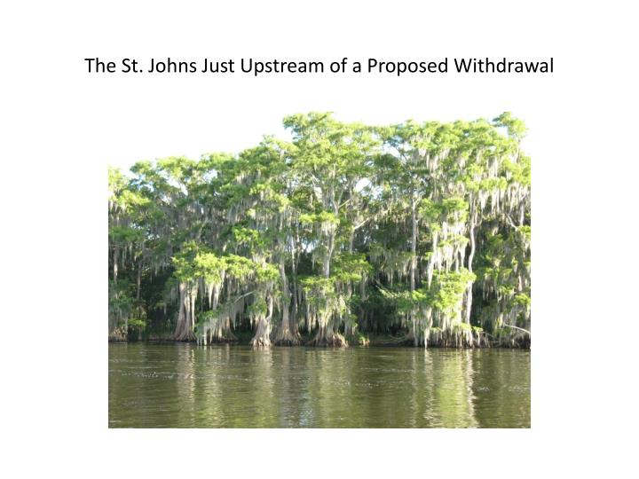 The St. Johns Just Upstream of a Proposed Withdrawal