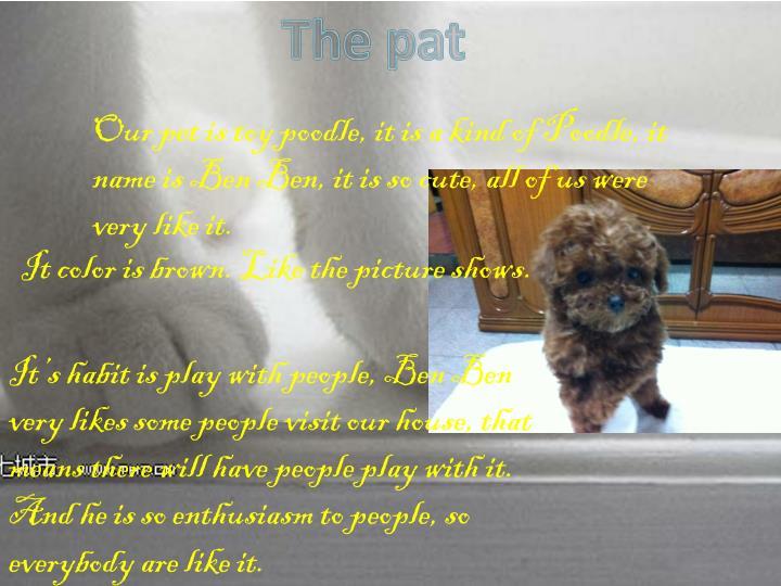 The pat