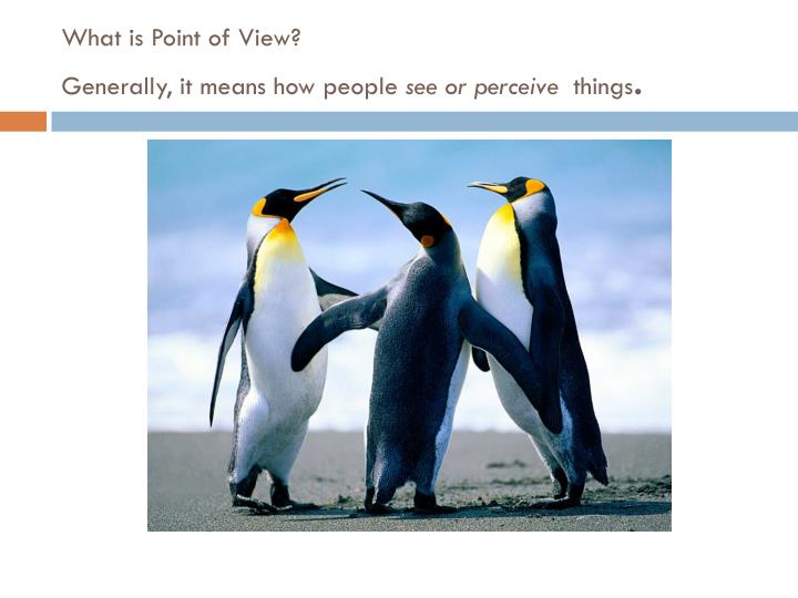 What is point of view generally it means how people see or perceive things
