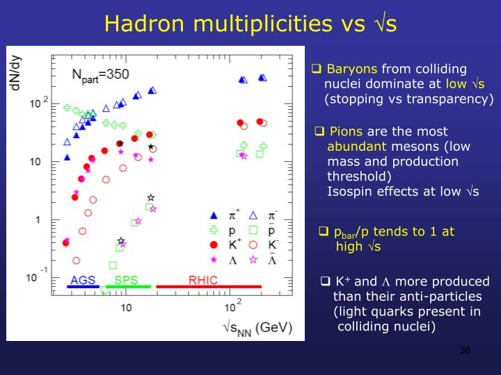 Hadron multiplicities