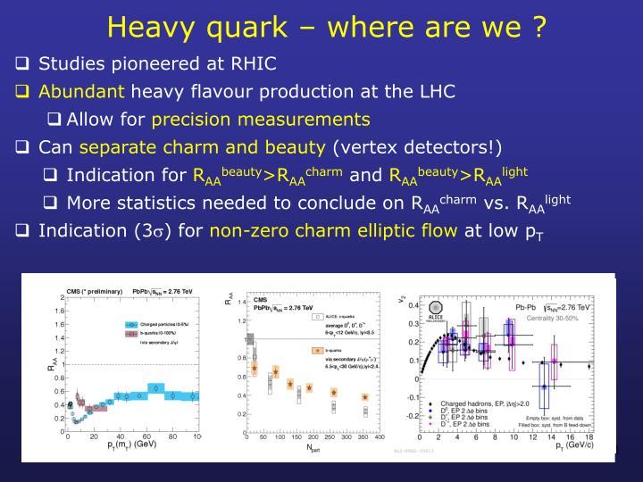 Heavy quark – where are we ?