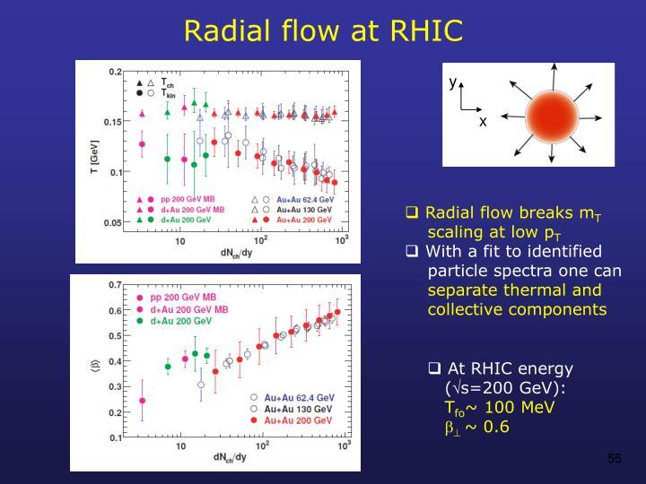 Radial flow at RHIC