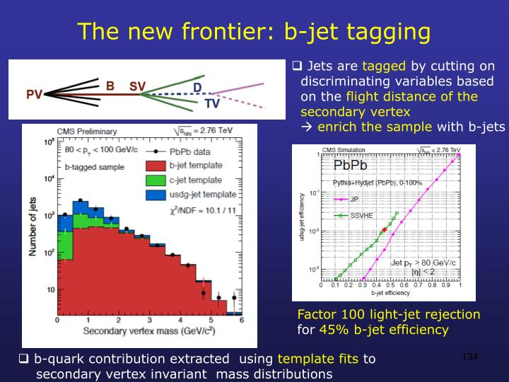 The new frontier: b-jet tagging