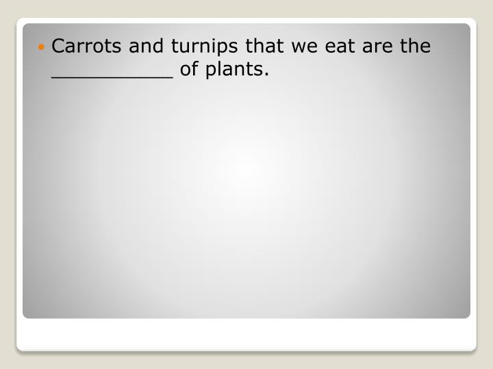 Carrots and turnips that we eat are the __________ of plants.
