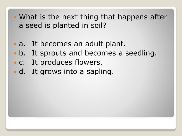 What is the next thing that happens after a seed is planted in soil?
