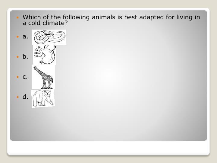 Which of the following animals is best adapted for living in a cold climate?