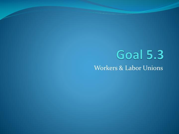 Goal 5.3