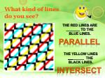 what kind of lines do you see2