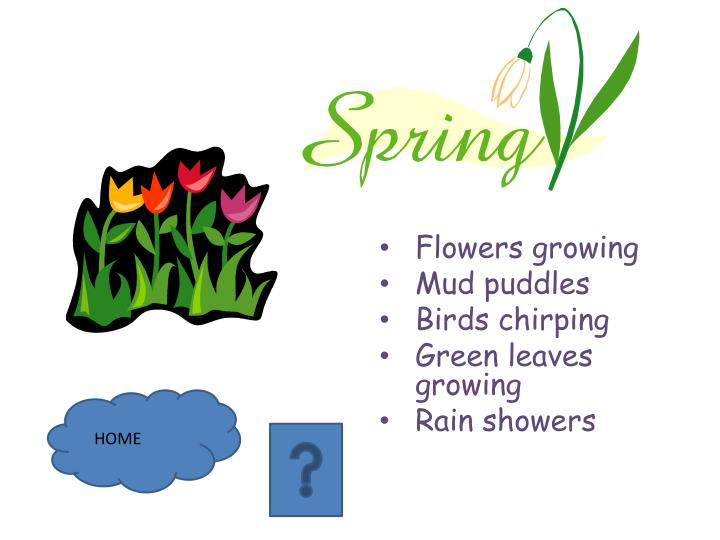 Flowers growing mud puddles birds chirping green leaves growing rain showers