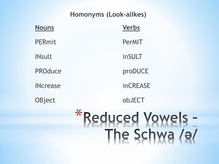 Homonyms (Look-alikes)
