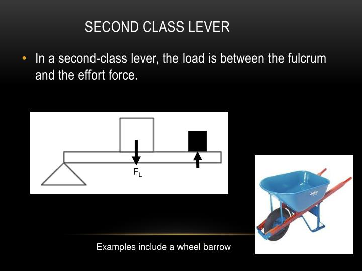 Second Class Lever