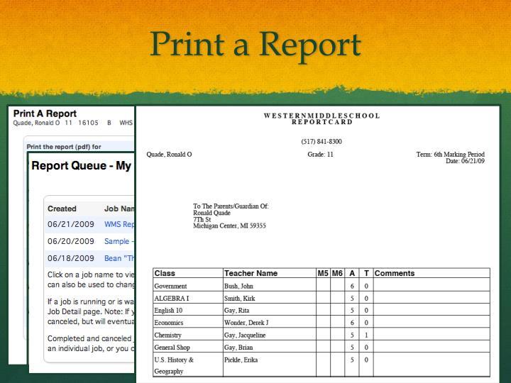 Print a Report