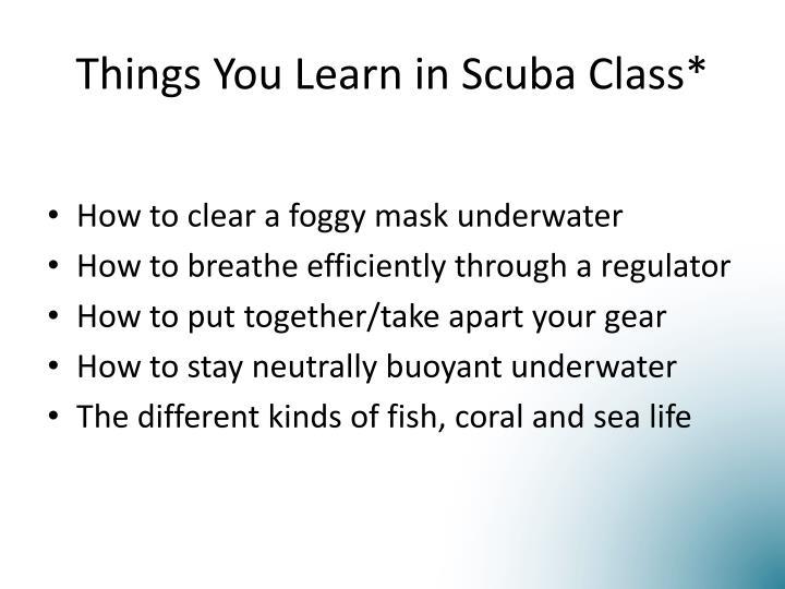 Things You Learn in Scuba