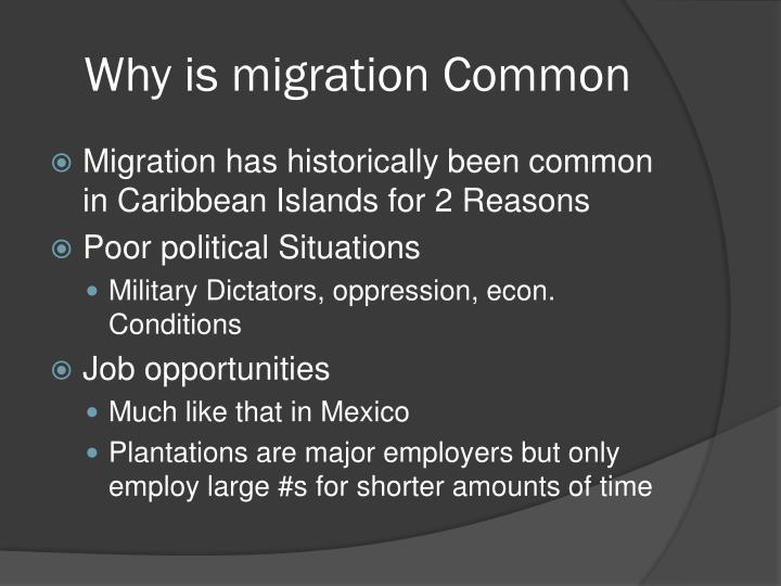 Why is migration Common