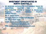 investment opportunities in north sumatra 1