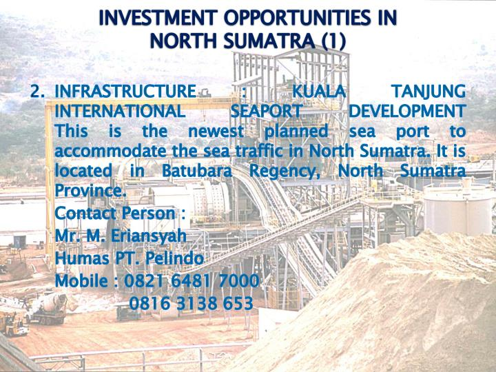 INVESTMENT OPPORTUNITIES IN