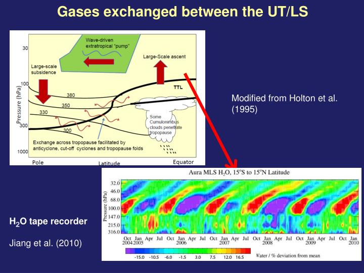 Gases exchanged between the UT/LS