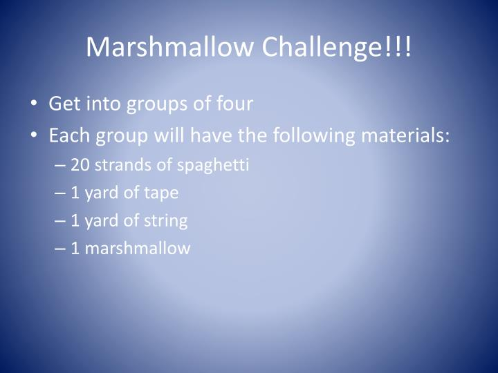 Marshmallow Challenge!!!