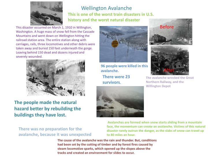 Wellington Avalanche