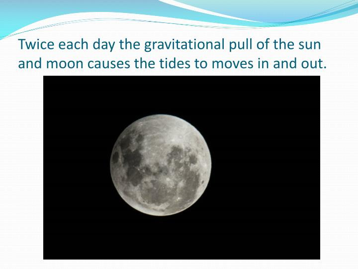 Twice each day the gravitational pull of the sun and moon causes the tides to moves in and out