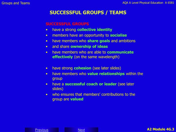 SUCCESSFUL GROUPS